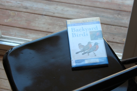 backyard birds book homeschoolbytes Spring Homeschooling Bird Study Ideas