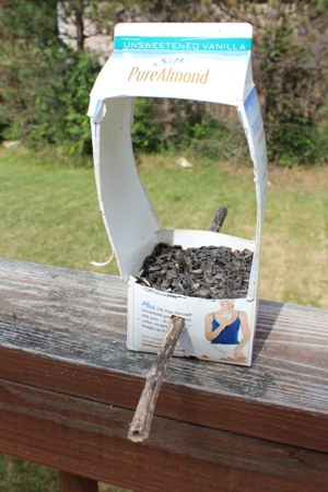 bird feeder homeschoolbytes Spring Homeschooling Bird Study Ideas