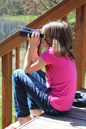 homeschoolbytes birdwatching Spring Homeschooling Bird Study Ideas